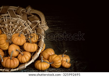 Many Moody Fall Halloween, Thanksgiving MIni Pumpkins in a basket Still Life against Dark Rustic Wood Wall with room or space for copy, text, your words.  Horizontal  dramatic vignette and side light - stock photo