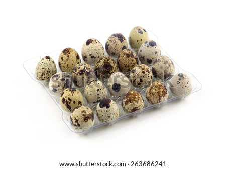 Many mottle quail eggs in plastic packaging cells isolated on white side view closeup - stock photo