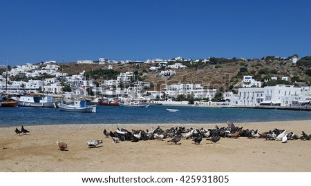 Many pigeons at the beach on old port of Mykonos island, Greece - stock photo