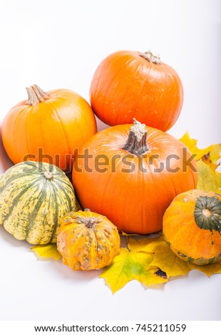 Many pumpkins on a white background