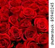 stock photo : many red roses shot in shallow DOF