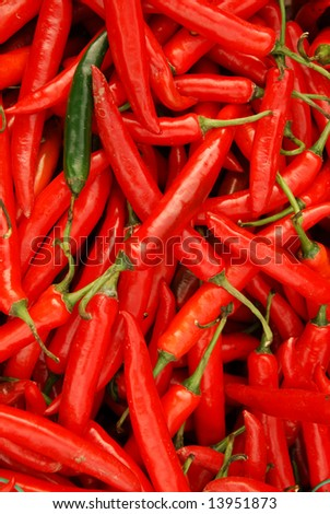 Many spicy red chillies and one green. - stock photo