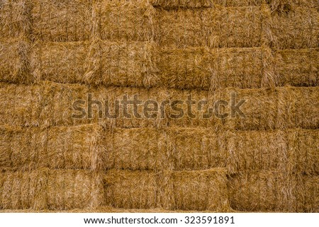 Many straw or hay bales stacked on a big pile.  - stock photo
