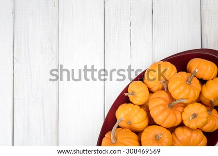 Many Thanksgiving, Colorful Fall Mini Pumpkins in a Red Wood Bowl in corner on Rustic White or gray Painted Board Background with room or space for copy, text, your words.  Above view horizontal - stock photo