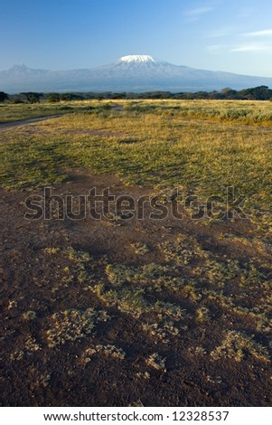 Many tracks on dirty earth road and Mt Kilimanjaro in the distance - stock photo