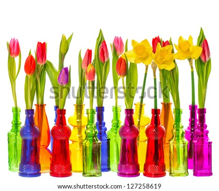 many tulip and narcissus flowers in colorful glass vases on white background - stock photo