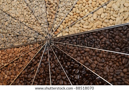 Many varieties of coffee beans - stock photo
