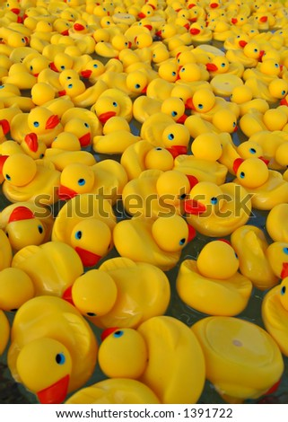 Many Yellow Rubber Ducks Floating in Water - stock photo