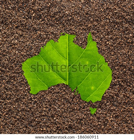 Map of Australia made of green leaf on soil background - stock photo