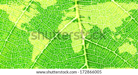 Map of the World on a Green Leaf- original image of Earth from NASA - stock photo