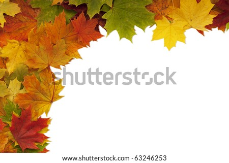 Maple leaf frame on white with clipping path. - stock photo