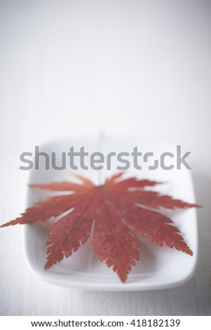 Maple leaf on plate - stock photo