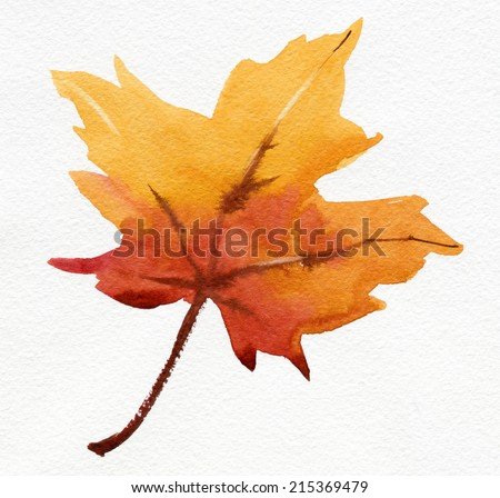 Maple Leaf. Watercolor. - stock photo
