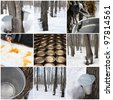 Maple syrup production in Quebec, Canada. Spring forest and buckets for collecting maple sap. - stock photo