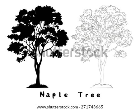 Maple Tree with Leaves and Grass Black Silhouette, Contours and Inscriptions Isolated on White Background.  - stock photo