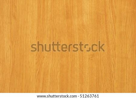 maple   tree wood textured background - stock photo