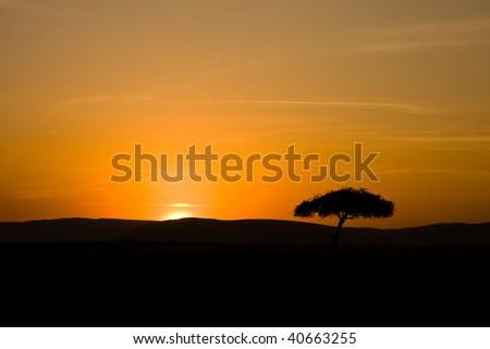 Mara Sunrise III - stock photo