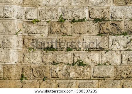 Marble stone wall with grass, Greece, Athens, old town. the city's historic center - stock photo
