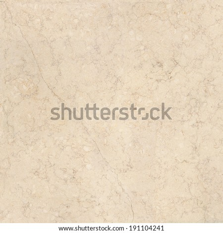 Marble texture. Beige stone background.  Quality coquina texture with small shells. High resolution.