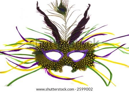 Mardi Gras mask - stock photo