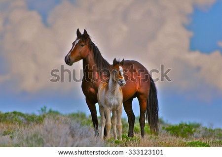 Mare and foal, wild in Utah desert - stock photo