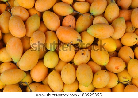 Marian Plum and Plum Mango or Mayongchid Maprang in thailand - stock photo