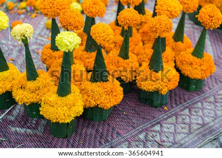Marigold (Zendu Flowers) flowers design for pray Stupa, Display for sale to tourist at Lungprabang, Laos.  Cultural in Asia Style  - stock photo