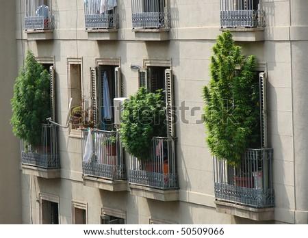 marihuana bushes on balconies of barcelona, spain, catalonia - stock photo