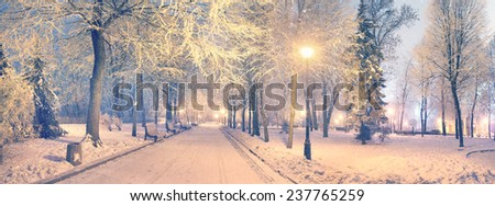 Mariinsky garden during inclement weather has its charm and Sharm glow lamps, soft snow- winding paths and roads - is a favorite place of citizens of the Ukrainian capital at all times  the season - stock photo