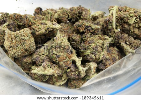 Marijuana - stock photo