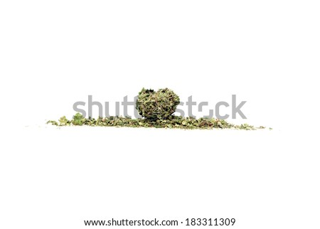 Marijuana and Cannabis Legalization, Objects on White Background, Medical and Recreational Weed - stock photo