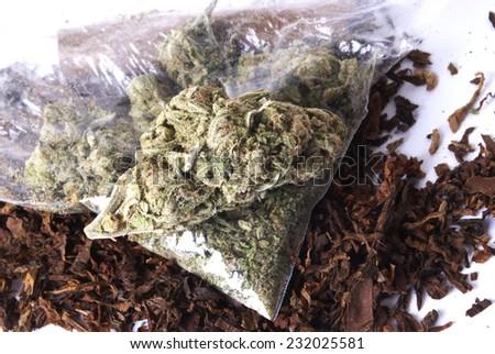 Marijuana and Cannabis, Weed  - stock photo