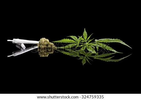 Marijuana background. Cannabis cigarette joint, bud and hemp leaves isolated on black background. Addictive drug or alternative medicine.  - stock photo