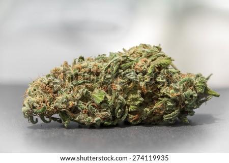 Marijuana Bud Close Up on Table - stock photo
