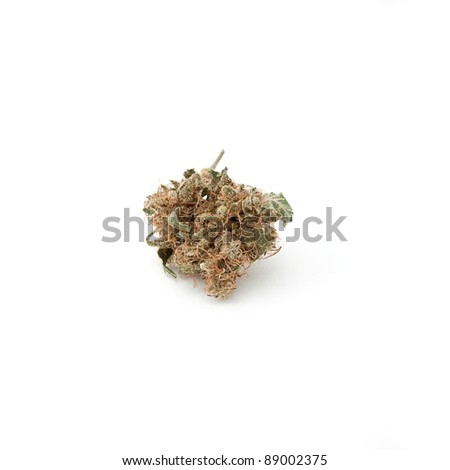 Marijuana bud cultivated by indoor process over white