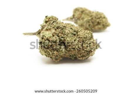 Marijuana Buds on White  - stock photo
