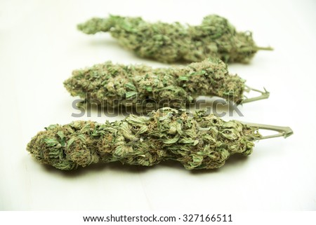 Marijuana buds. Therapeutic cannabis drug isolated on cleat background - stock photo