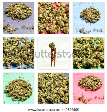 Marijuana Images; Layout Design and Collage  - stock photo