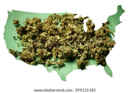 Marijuana in America  - stock photo