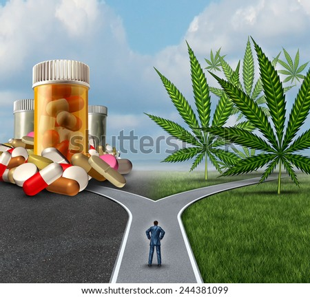 Marijuana medical choice dilemma health care concept as a person standing in front of two paths with one offering traditional medicine and the other option with cannabis. - stock photo
