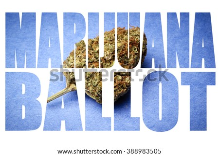Marijuana on the Ballot