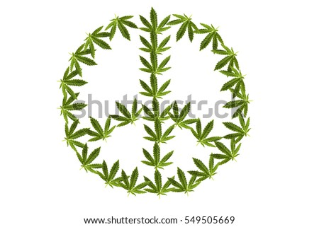 marijuana peace sign. isolated on white with room for your text. real marijuana leaf layered into a peace sign over white. peace and love and pot .