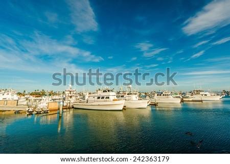 Marina in San Diego North Bay, California, United States. Boats in the Marina. - stock photo