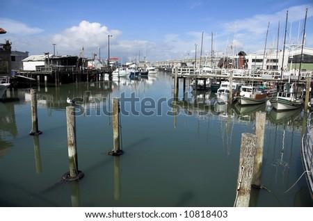Marina in San Fracnisco - stock photo