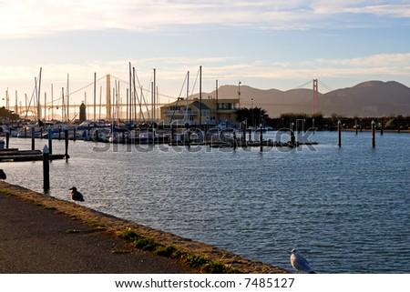 Marina next to Golden Gate Bridge in San Francisco - stock photo