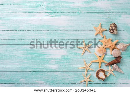 Marine items on turquoise painted wooden background. Sea objects on wooden planks. Selective focus.  - stock photo