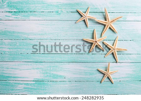 Marine items on wooden background. Sea objects on aged wooden table. Selective focus. - stock photo