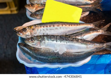 Market fish on ice for sell