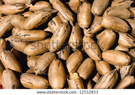 Market for farm products: fresh organic nuts for sale.