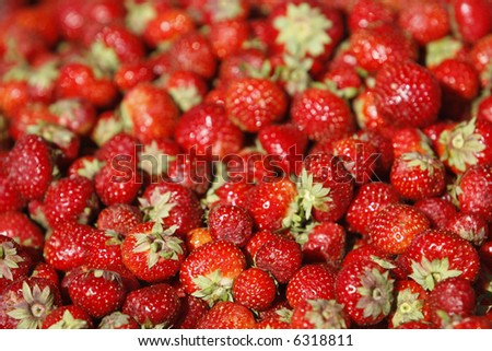 Market for farm products: the fresh organic strawberry for sale.